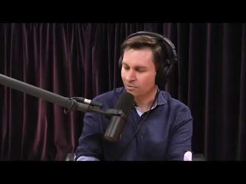 Joe Rogan talks intermittent fasting, resveratrol, and longevity with David Sinclair