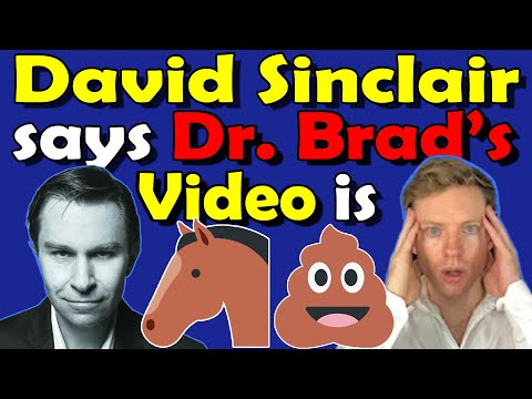 Why did David Sinclair say that Brad Stansfield's Resveratrol video was Horse Sh!t?